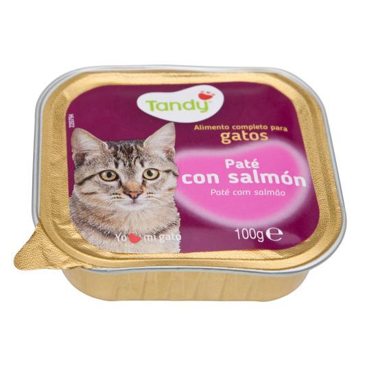 ALIM.GATO TANDY SALMON TARRINA 100GR